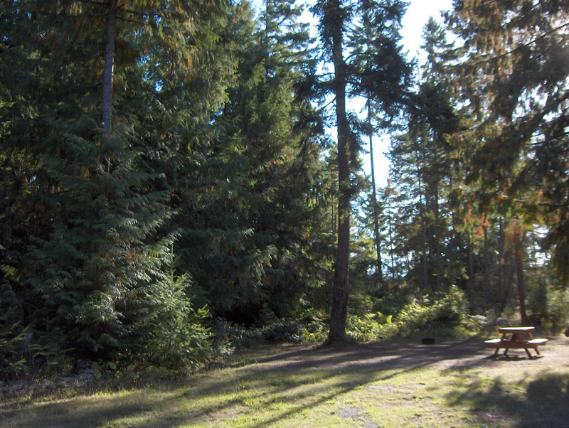 Vancouver Island Campsite and Campground